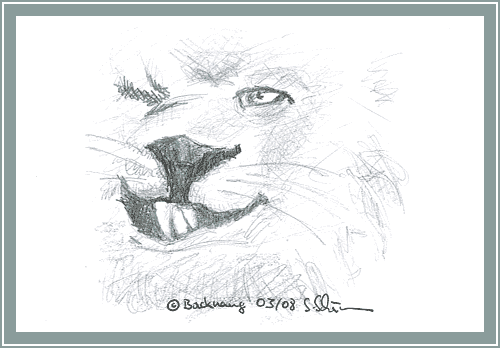 The lions smirky smile